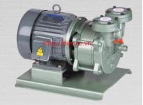 Máy bơm hút chân không vòng nước liền trục hiệu HANCHANG Model: HWVP-D-100/170